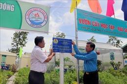 Kiên Giang thực hiện nhiều công trình chào mừng đại hội đảng bộ các cấp