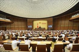 Ngày 16/6, Quốc hội biểu quyết Luật Thanh niên (sửa đổi) và Luật Hòa giải, đối thoại tại Tòa án