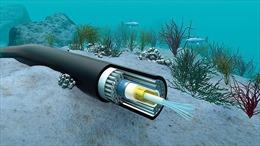 Ngày 24/2 dự kiến hoàn thành sửa chữa sự cố trên các tuyến cáp quang internet
