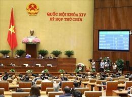 Thông qua Nghị quyết về thí điểm một số cơ chế, chính sách đặc thù phát triển Đà Nẵng