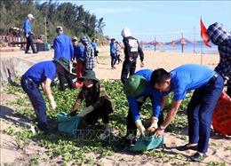 Trên 700 đoàn viên vệ sinh môi trường bãi biển Thiên Cầm
