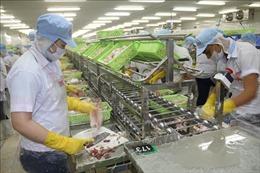 Tiền Giang giữ đà tăng trưởng xuất khẩu