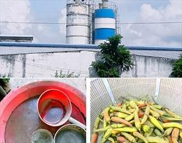 Trạm trộn bê tông hoạt động chui, gây ô nhiễm môi trường nghiêm trọng tại thành phố Bạc Liêu