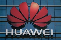 Tập đoàn Huawei đánh giá tác động từ lệnh cấm vận của Mỹ