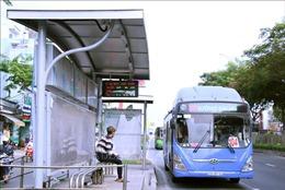Sở GTVT TP Hồ Chí Minh: Không có việc dừng xe buýt từ ngày 15/8