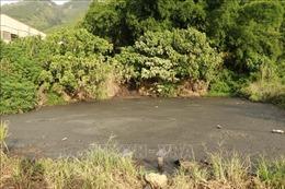 Kiến nghị xử lý dứt điểm ô nhiễm môi trường tại trại chăn nuôi lợn Công ty Hoàng Vũ Lai Châu