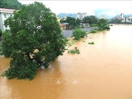 Thủ tướng Chính phủ yêu cầu khẩn trương khắc phục hậu quả mưa lũ tại Hà Giang