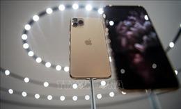 Apple bắt đầu sản xuất iPhone 11 tại Ấn Độ