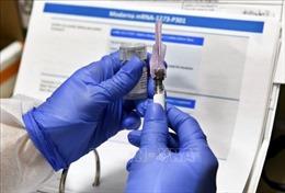 Nhiều tín hiệu lạc quan trong công tác bào chế vaccine chống COVID-19 tại Mỹ