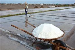 Hướng đi mới cho nghề muối