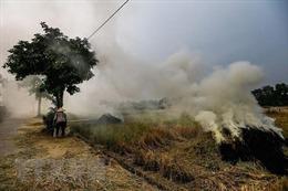 Ứng phó với biến đổi khí hậu toàn cầu: Bài 1-Nâng mức đóng góp của Việt Nam