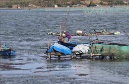 Phú Yên xử lý tình trạng lấn chiếm thắng cảnh quốc gia đầm Ô Loan