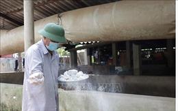 Kiểm soát chặt dịch bệnh lở mồm long móng trên đàn gia súc