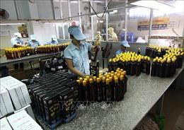 Khánh Hòa tìm vị trí phù hợp để di dời cơ sở sản xuất nước mắm ra xa khu dân cư