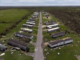 Mỹ: 14 người thiệt mạng do bão Laura