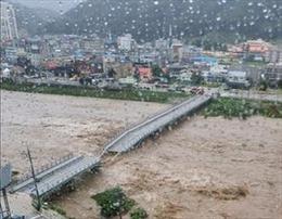 Bốn nhà máy điện nguyên tử ở Hàn Quốc ngừng hoạt động do bão Maysak