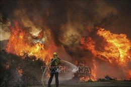 Tiếp tục phát sinh nhiều đám cháy rừng ở California