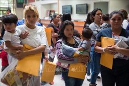 Tòa án bác bỏ sắc lệnh của Tổng thống Donald Trump liên quan người nhập cư bất hợp pháp