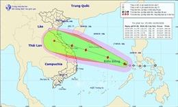 Các tỉnh, thành phố từ Thanh Hóa đến Bình Thuận chủ động ứng phó mưa lũ và bão số 5