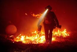 Thời tiết khô nóng khiến cháy rừng dữ dội hơn ở bang California