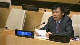 Việt Nam chủ trì phiên họp của Ủy ban của Hội đồng Bảo an về Nam Sudan