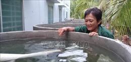 'Đồng khởi trữ nước mưa, nước ngọt' ở Bến Tre
