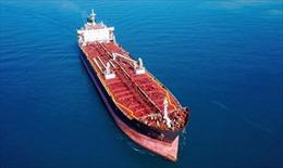 Tổng thống Yemen kêu gọi quốc tế hỗ trợ ngăn chặn thảm hoạ từ tàu chở dầu Safer
