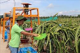 Công nhận hai huyện, thị xã của Tiền Giang đạt chuẩn nông thôn mới