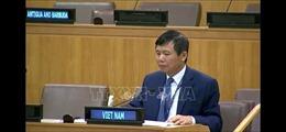 Việt Nam đề cao đối thoại, hoà giải trong giải quyết xung đột tại Congo