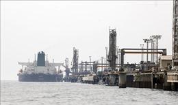 Giá dầu tăng hơn 9% trong tuần qua