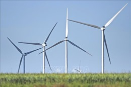 Đắk Nông chấp thuận chủ trương đầu tư dự án điện gió hơn 1.000 tỷ đồng