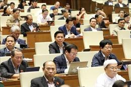 Cử tri Ninh Thuận, Bình Dương đánh giá cao kết quả phát triển kinh tế - xã hội