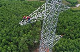 Nhiều vướng mắc cản trở tiến độ dự án đường dây 500 kV mạch 3