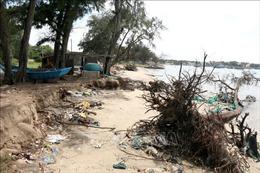 Khắc phục tình trạng biển xâm thực gây sạt lở ở Tuy Phong, Bình Thuận