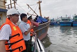 Kiểm soát chặt chẽ tàu, thuyền; xử phạt các chủ phương tiện không tuân thủ an toàn trong thiên tai