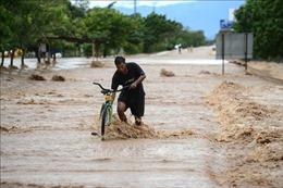 Gia tăng số người thiệt mạng tại Mexico và Honduras do bão Eta