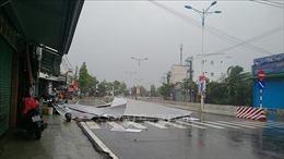 Những thiệt hại ban đầu do bão số 12 tại Khánh Hòa