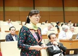 Thời điểm chín muồi để ra Nghị quyết về tổ chức chính quyền đô thị tại TP Hồ Chí Minh