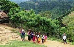Tiêu chí phân định vùng đồng bào dân tộc thiểu số và miền núi