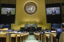 Việt Nam mong muốn Israel và Palestine sớm nối lại đàm phán