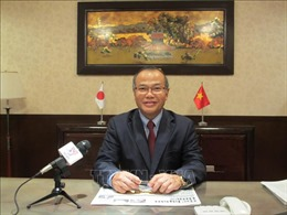 Nỗ lực hỗ trợ cộng đồng người Việt tại Nhật Bản gặp khó khăn do dịch COVID-19