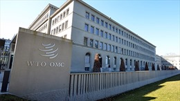 WTO kêu gọi các nước thúc đẩy cải cách ứng phó với những thách thức toàn cầu mới