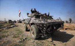 Iraq tiêu diệt 42 phần tử IS