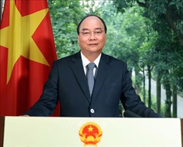 Hợp tác Việt Nam - OECD đang phát triển ngày càng tích cực và thực chất