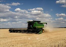 Australia khiếu nại Trung Quốc lên WTO về thuế đối với lúa mạch