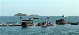 Đẩy nhanh tiến độ chương trình trọng điểm về môi trường biển và hải đảo