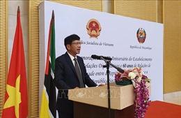 Quan hệ Việt Nam-Mozambique qua 45 năm hữu nghị, thực chất và hiệu quả