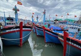Ninh Thuận: Khuyến cáo không nên đưa tàu thuyền ra khơi khi thời tiết bất lợi