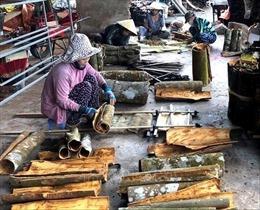 Quảng Ngãi: Sản phẩm quế Trà Bồng được cấp đăng ký chỉ dẫn địa lý