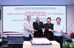 TP Hồ Chí Minh: Kỷ niệm 65 năm quan hệ ngoại giao Việt Nam-Indonesia